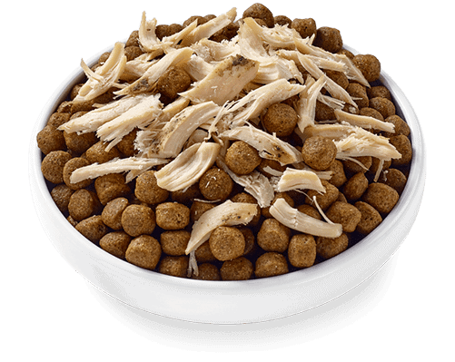 Applaws Taste Toppers chicken filet dog food topper on dry dog food