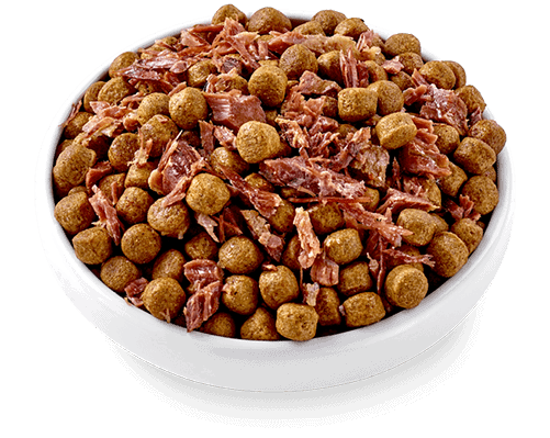 Applaw Taste Toppers beef filet with red bell pepper dog food topper mixed with dry dog food
